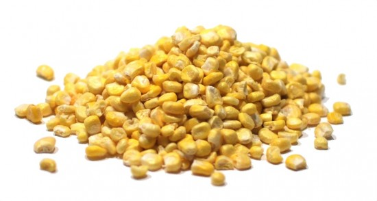 Corn, Super Sweet