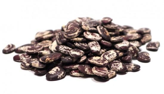 Christmas Lima Beans (Heirloom)