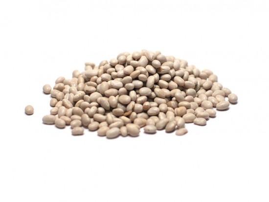 Small White Beans