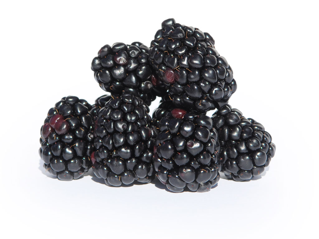 Blackberry Flavor Extract