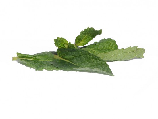 Mint Flavor Extract