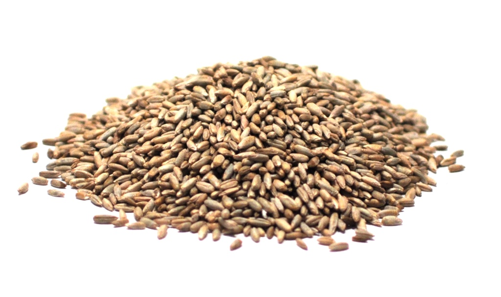 Whole Organic Rye Berries